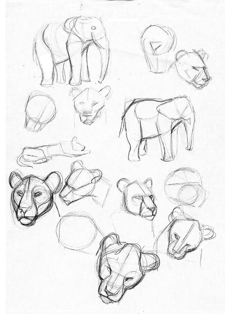 sof a mercuri dibujos en el zoo Uruguay Zoo Animals dibujos en el zoo