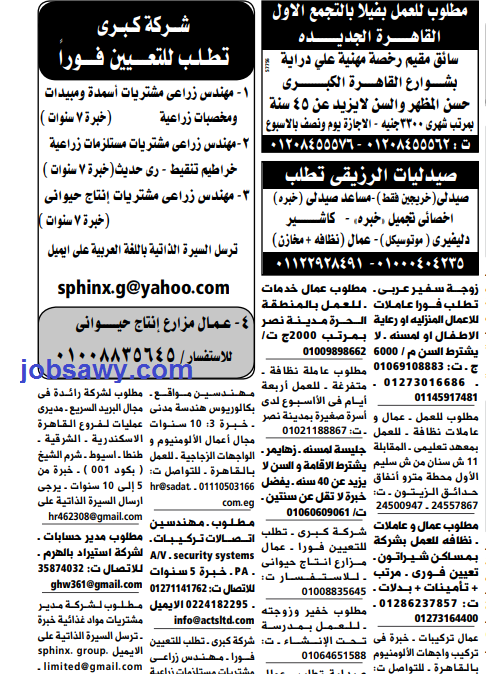 وظائف جريدة الوسيط اليوم الاثنين 20 مايو 2019 القاهرة والاسكندرية 20/5/2019