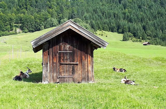 Pieni latomökki Geroldseen lähellä Garmisch-Partenkirchen Saksa