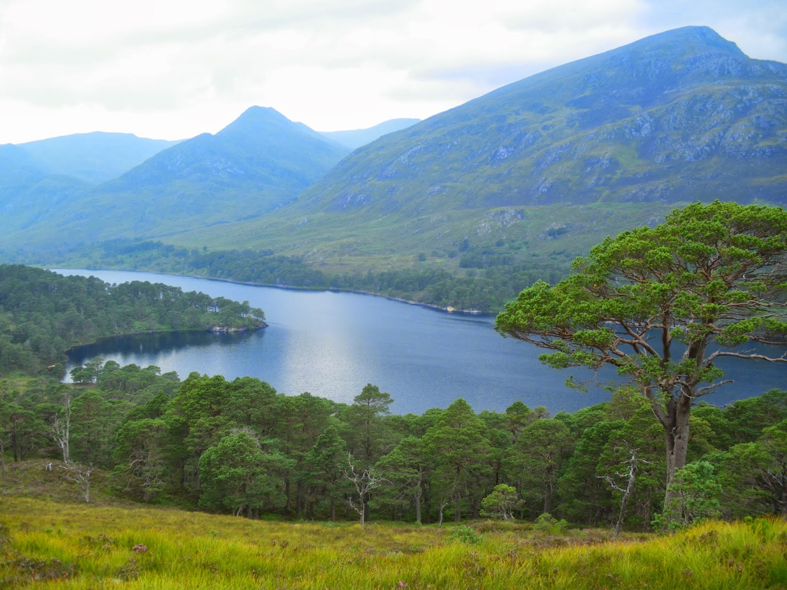 Loch Affric, Glen Affric, Highlands, Scotland, Escòcia, Regne Unit, United Kingdom