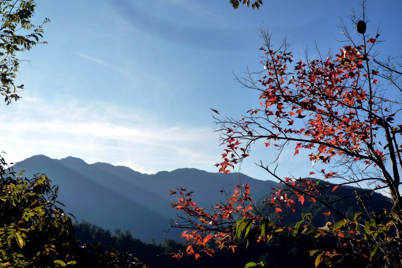 slowpaced: 波津加山