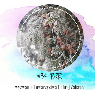 http://tdz-wyzwaniowo.blogspot.com/2019/01/brr-wyzwanie-34.html