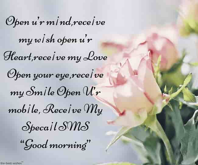 good morning sms messages with pink rose