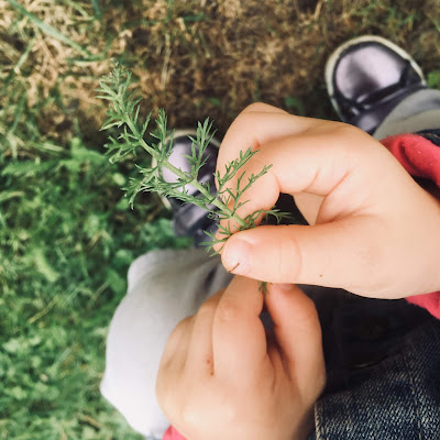entre les doigts de l'enfant, la nature