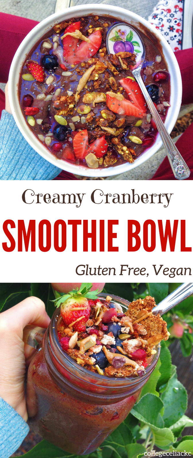 Creamy Cranberry Smoothie Bowl (Gluten Free, Vegan)