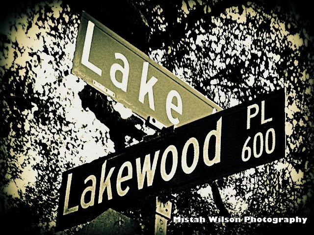 Lake Avenue & 600 Lakewood Place, Pasadena, California by Mistah Wilson Photography