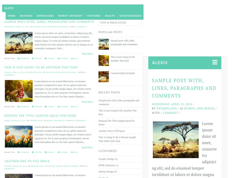 Großartig Blogger Seo Vorlagen Zeitgenössisch - Entry Level Resume ...