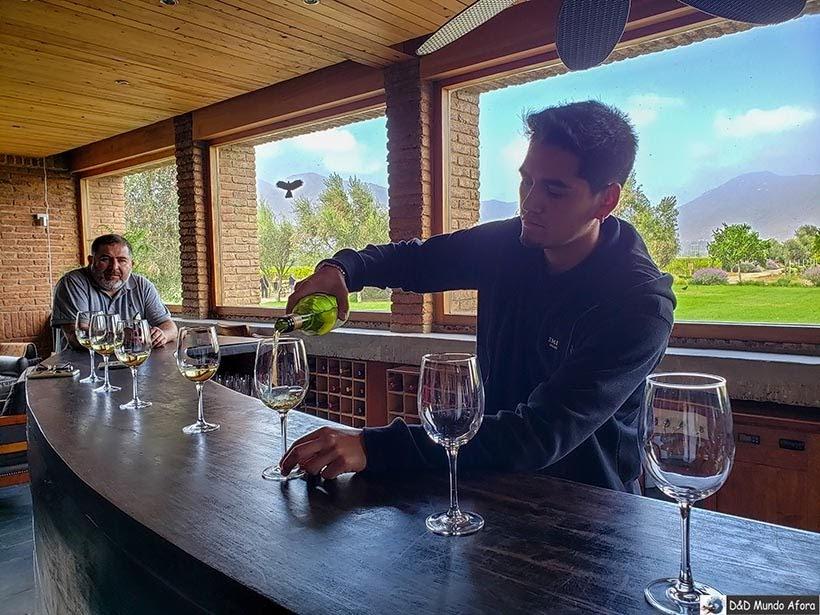 Degustação na Vinícola Emiliana - Diário de Bordo Chile: 8 dias em Santiago e arredores