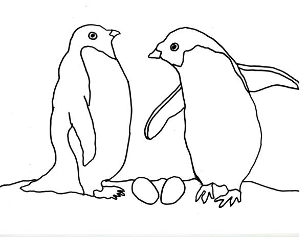 coloring pages penguin - caroline arnold art and books december 2011