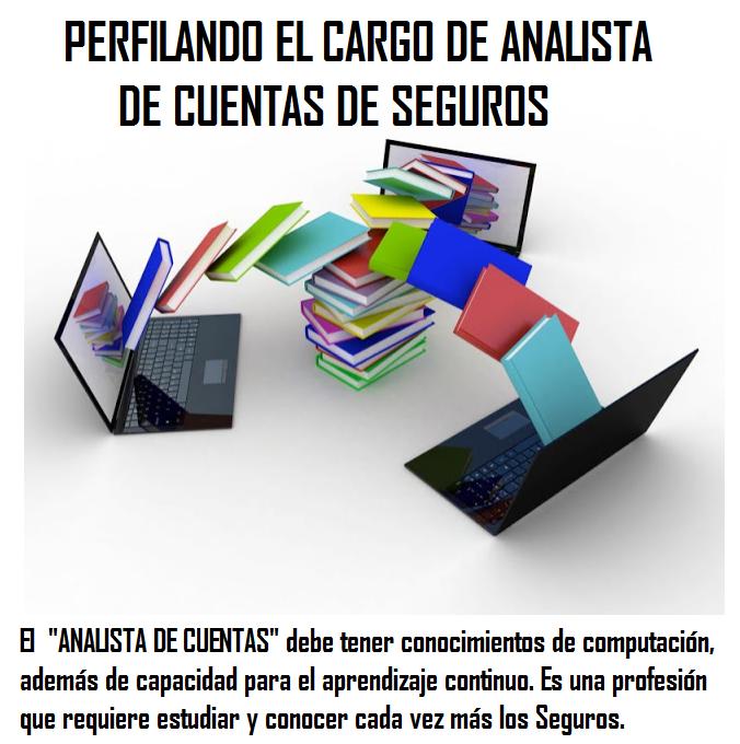Analista de Cuentas