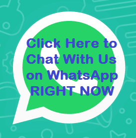 Chat With Us on WhatsApp Right Now
