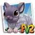 Fv 2 White Solid Violet Chinchilla  (baby ,adult,prized)