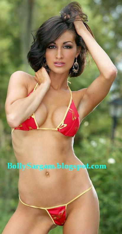 ashley bikini dorenzo hollywood bollywood