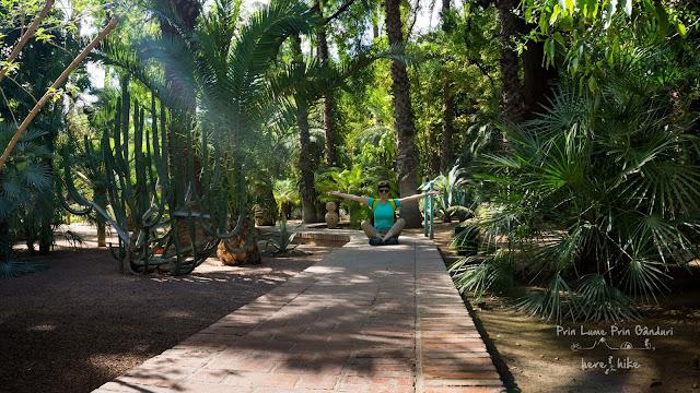morocco marakkesh Jardin Majorelle garden