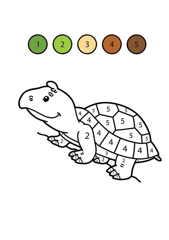 Hình tô màu con rùa theo số