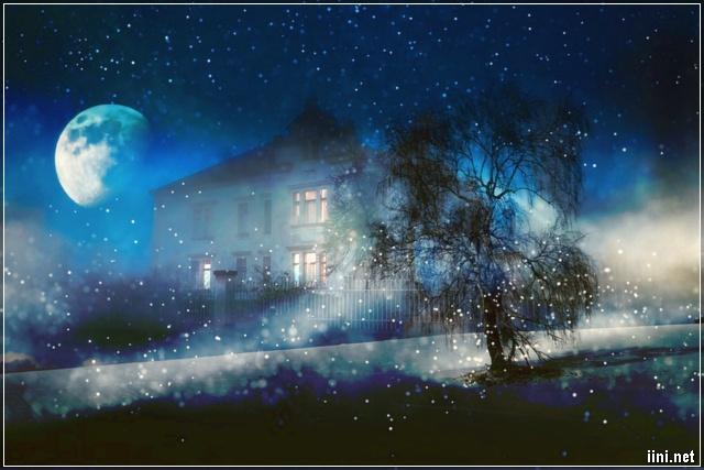 Ảnh nghệ thuật đêm trăng mùa đông