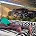 PHOTO: Footballer Emmanual Adebayor Shows Off His Expensive Fleet Of Cars