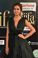 Esha Gupta in a Deep Neck Sleeveless Dark Green Gown at IIFA Utsavam Awards 2017     18.JPG