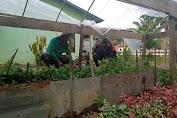 Babinsa Berikan Motivasi Kepada Petani Lele di Desa Binaan