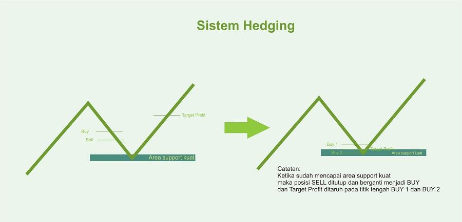 sistem-hedging