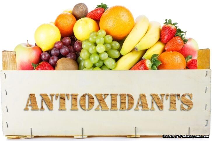 7 Jenis Makanan Yang Menguatkan Antibodi Tubuh