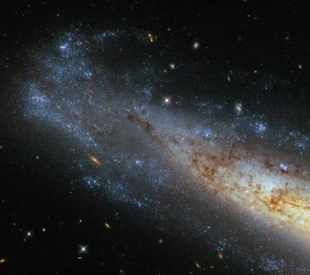 Hubble's glittering frisbee galaxy