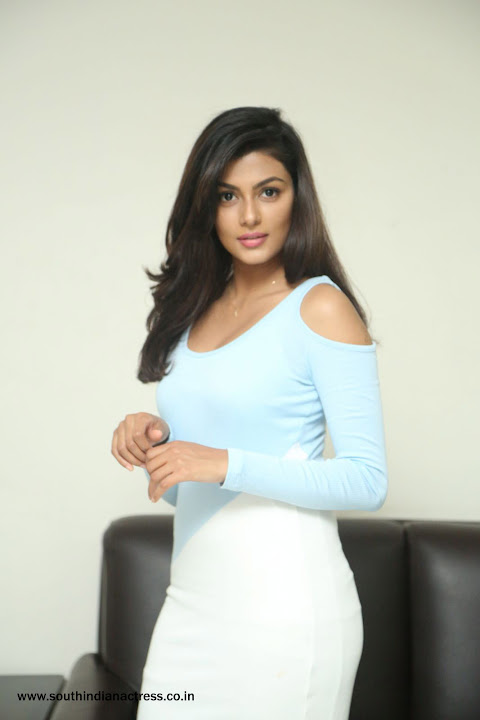 Anisha Ambrose Stills At Fashion Designer S O Ladies Tailor Interview South Indian Actress