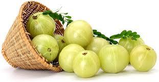 مطحون ثمار الأملج لعلاج الحموضة و إلتهابات المعدة