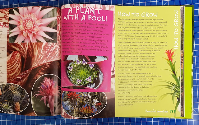 RHS Spectacular Plants pool species introduction images and text blocks