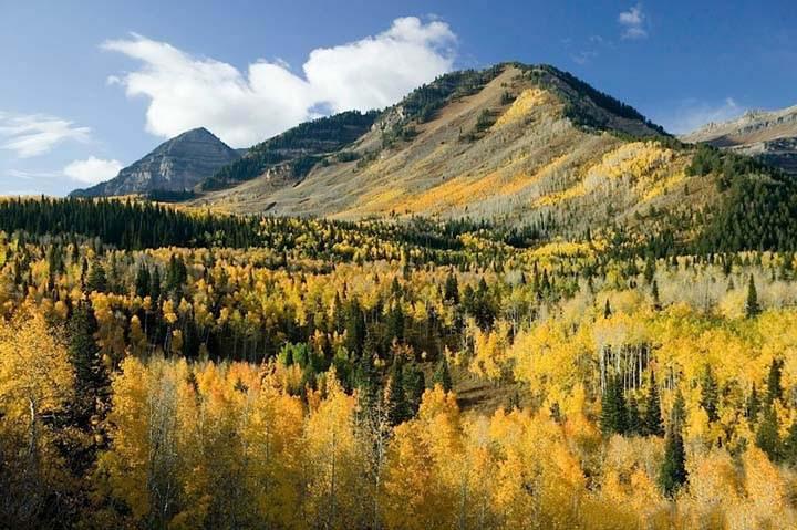 sonbahar mevsiminde dağ manzarası