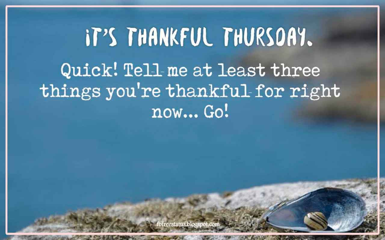 IT'S THANKFUL THURSDAY! Quick! Tell me at least three things you're thankful for right now... Go!
