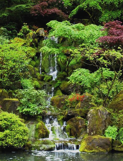 Urban Landscape, Native Landscape: Portland Japanese Garden