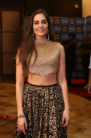Actress Model Sarah Hopkins Latest Pos in Lehenga Choli at SIIMA Short Film Awards 2017 .COM 0003.JPG