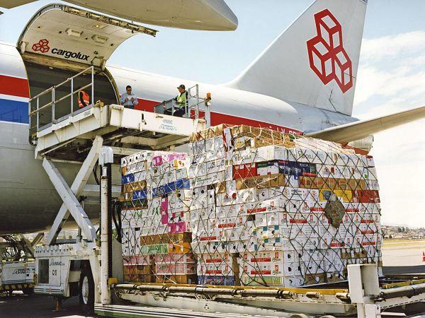 Vì sao một doanh nghiệp cần đế dịch vụ nhập khẩu ủy thác