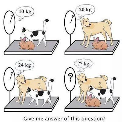 Simple Math Brain Teaser