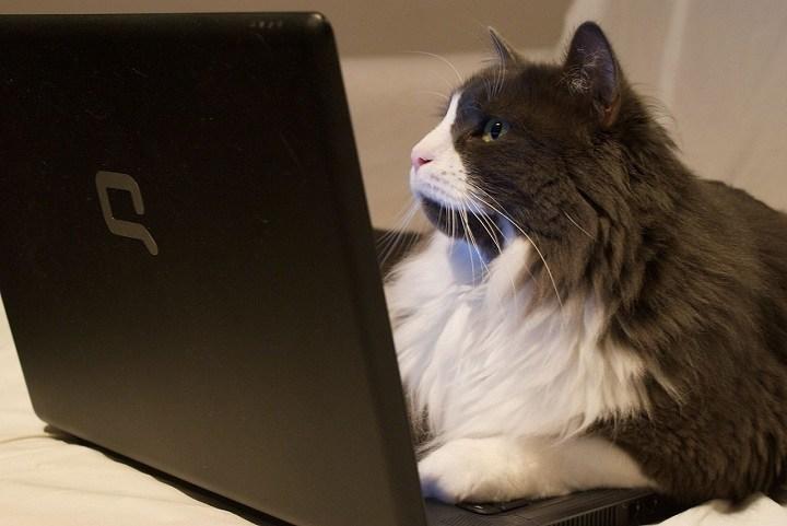 jangan main laptop di kasur karena tidak baik untuk laptop