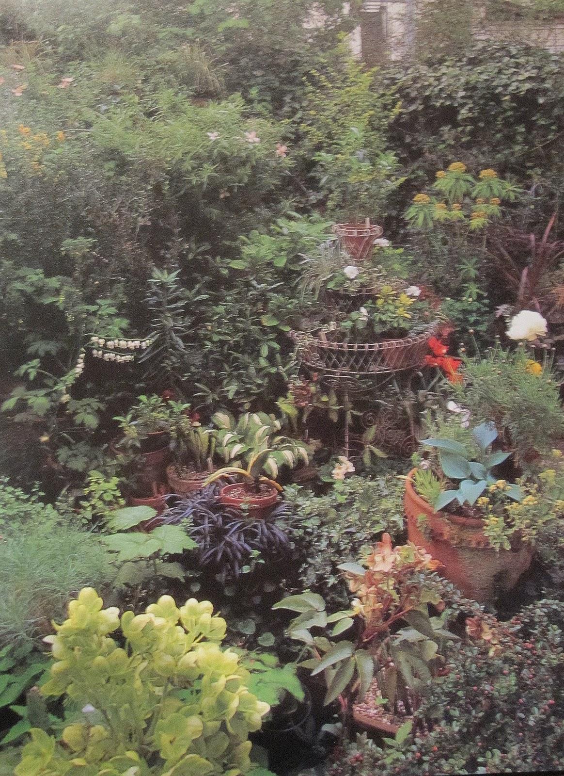 Paradis Express: Tout Petits Jardins, Jill Billington, 1999
