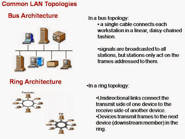 lan topologies essay Network topologies essays: over 180,000 network topologies essays, network topologies term papers, network topologies research paper, book reports 184 990 essays, term and research papers available for unlimited access.