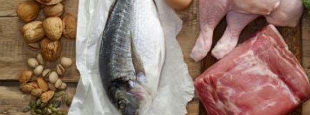 protein ikan