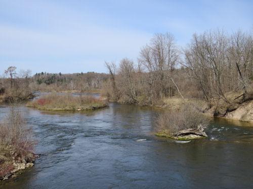 Manistee River from Highbridge