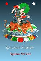 Spacious Passion