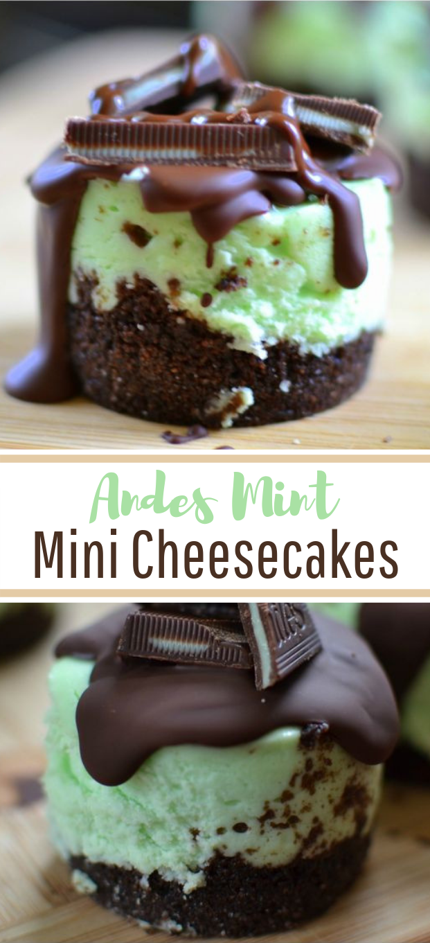 Andes Mint Mini Cheesecakes #cheesecake #desserts