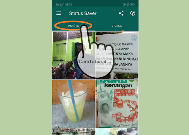 2 Cara Download Status WhatsApp Story Video Foto