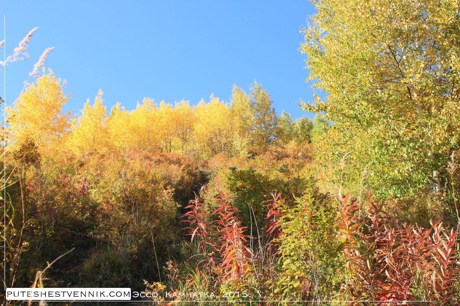 Камчатская осень в окрестностях Эссо