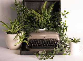 plants growing out of a manual typewriter