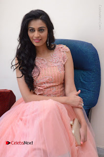 Actress Neha Hinge Stills in Pink Long Dress at Srivalli Teaser Launch  0079.JPG