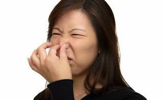 penyebab kentut bau