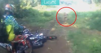 Manusia Primitif Tertangkap Kamera di Hutan Aceh, Diduga Warga Suku Mante