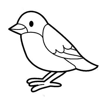 Tranh tô màu con chim đang đậu
