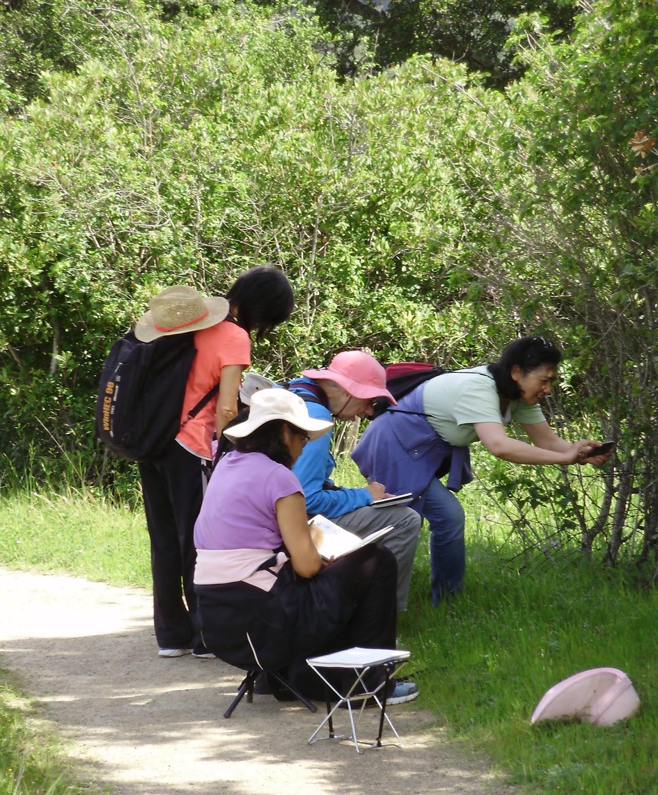 Edgewood Park And Natural Preserve Redwood City